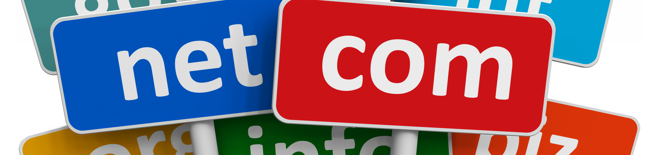 Secure Your Domain Name First